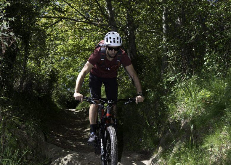 Circuit n°10 – Lourdes – Le chemin Henri IV