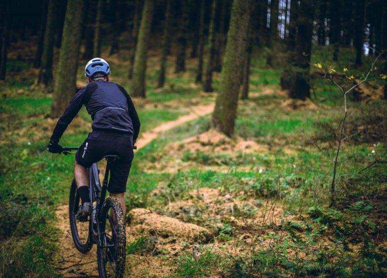 Circuit n°6 – Lourdes – La forêt de Bartès