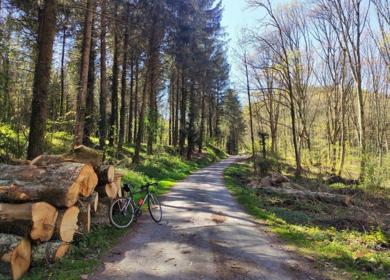 Pacourrs n°5 – Le pays de Lourdes