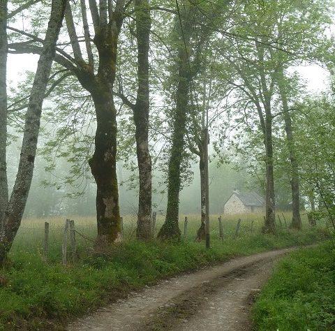 Circuit n°6 – Val d'Azun – La vallée perdue