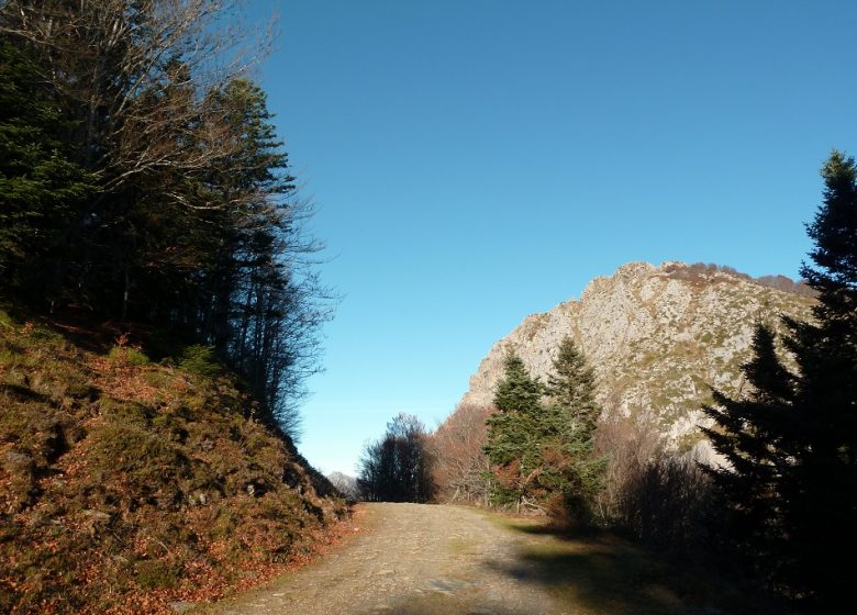 Circuit n°13 – Val d'Azun – Col de Bazes